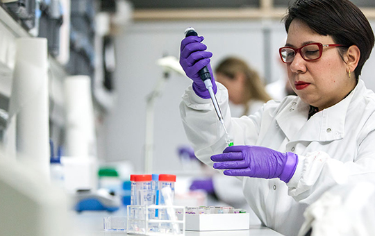 A scientist wearing purple gloves is using pipettes